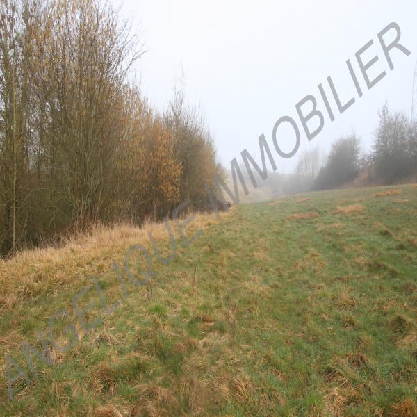 Offres de vente Terrain Gournay-en-Bray 76220